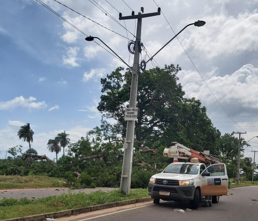 Árvore cai em cima da rede de energia elétrica e deixa moradores sem luz (Foto: Divulgação/Willamy Figueira - Jornal Imperatriz)